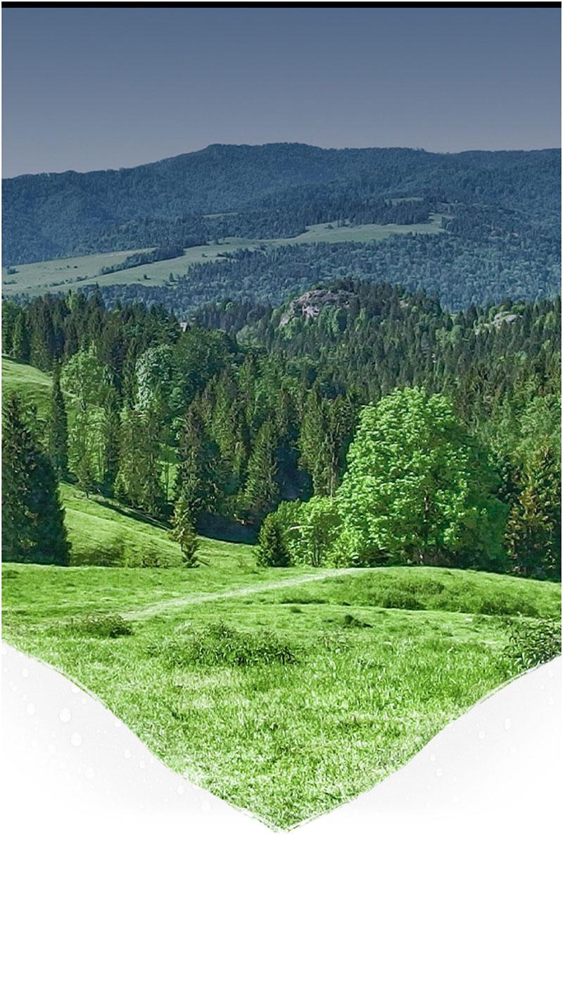 Zielony krajobraz Żywiecczyzny
